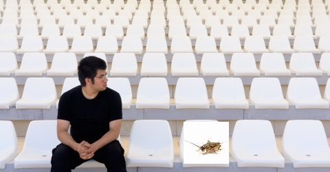 One audience